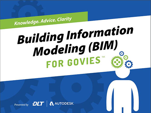 Cover image of Building Information Modeling (BIM) for Govies eBook